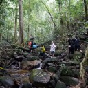 Belum jungle trekking