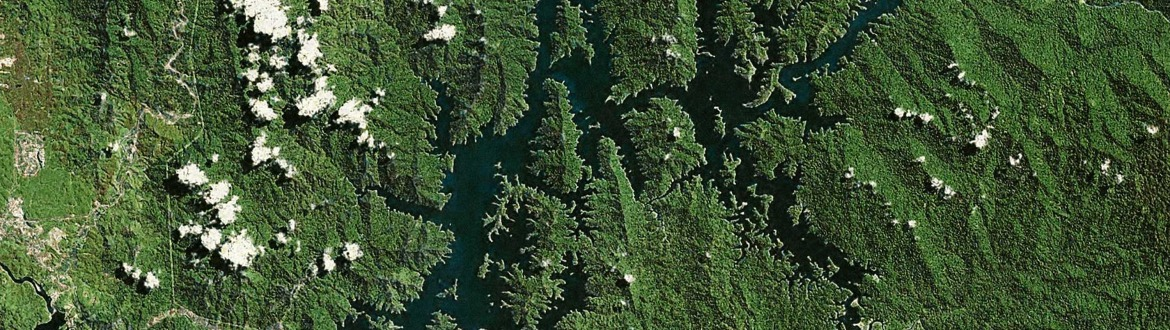 Lake Temenggor satellite view