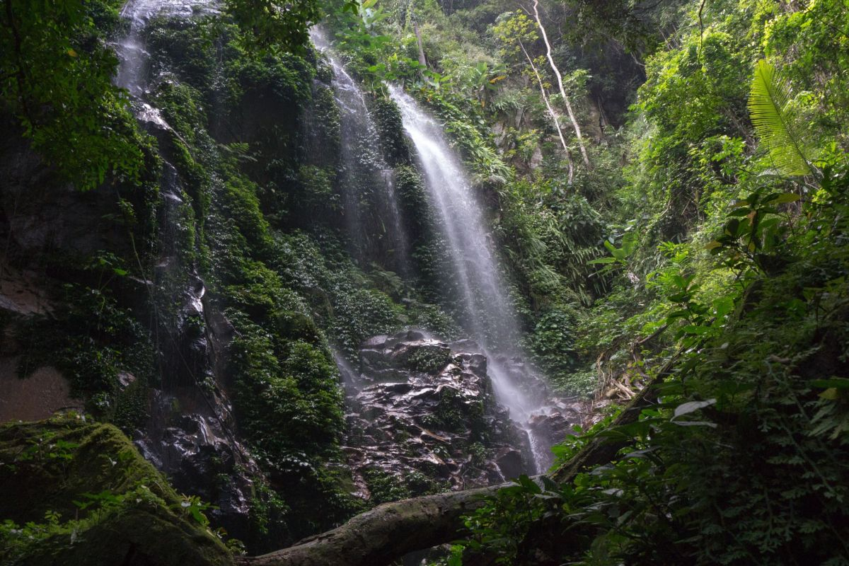 Kooi waterfall, Royal Belum