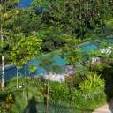 The pool of Belum Rainforest Resort