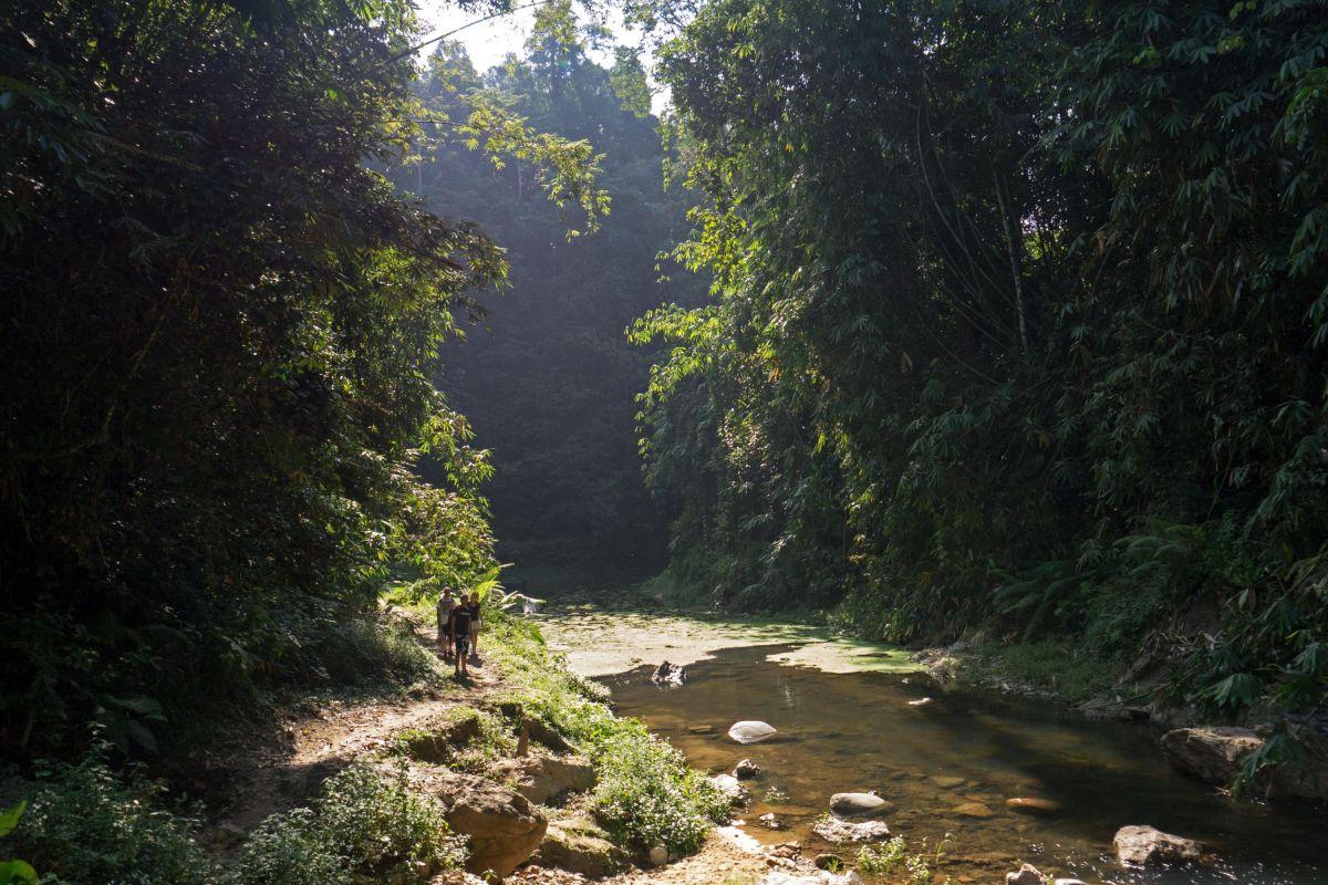 Trekking in Belum
